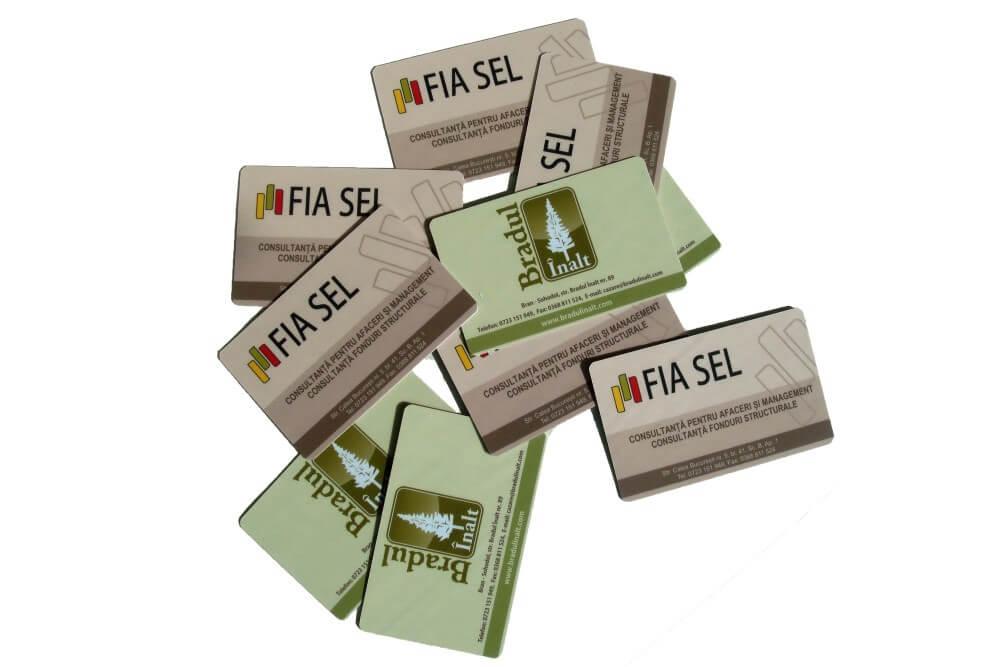 Carduri Personalizate 08