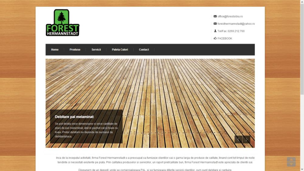 Website 06